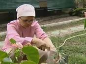 Jakarta, Indonésie, couple guérisseurs soigne les...