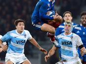 France croqué Puma