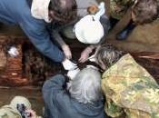 variole identifiée dans corps gelés Sibérie siècle