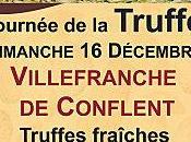 Décembre Journé Truffe