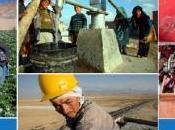 L'Afghanistan, Bonn Tokyo Quelles réalités quels devenirs