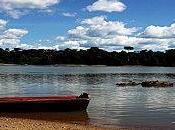 MARIPASOULA Amazonia