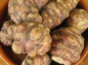 Semaine spéciale légumes oubliés topinambour