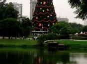 Noël Brésil
