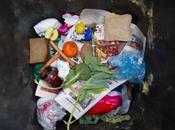 nourriture gaspillée dans monde