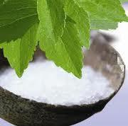stevia poudre