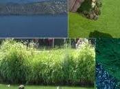 Klamath algue multiples bienfaits santé…