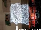 Woodpigeon ThumbTacks Glue