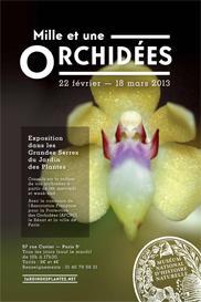 Mille et une orchidées dans les grandes Serres du Jardin des Plantes ...