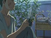 Bluray film animation Kotonoha Niwa, daté Japon