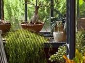 véranda, solution pour profiter jardin comme hiver