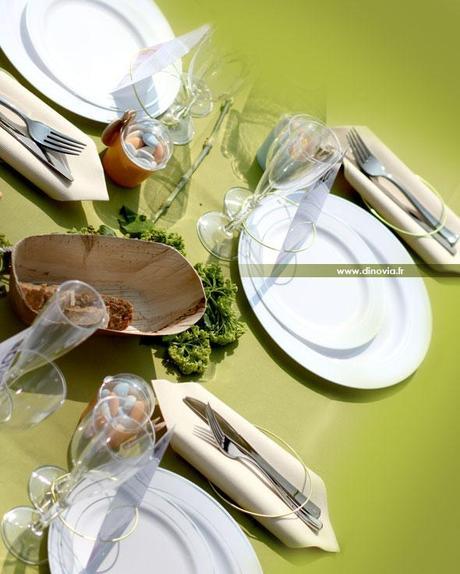 Décoration de table jetable
