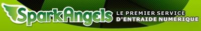 Monétisez votre savoir-faire grâce au Widget Pro de SparkAngels