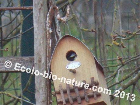 l 39 oiseau fait son nid paperblog. Black Bedroom Furniture Sets. Home Design Ideas