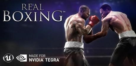 real boxing home