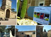 belles rencontres début l'année Millésimes 2013 Montpellier