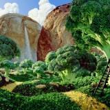Warner - Foodscapes 04