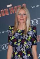 Iron Man 3 - Gwyneth Paltrow 3