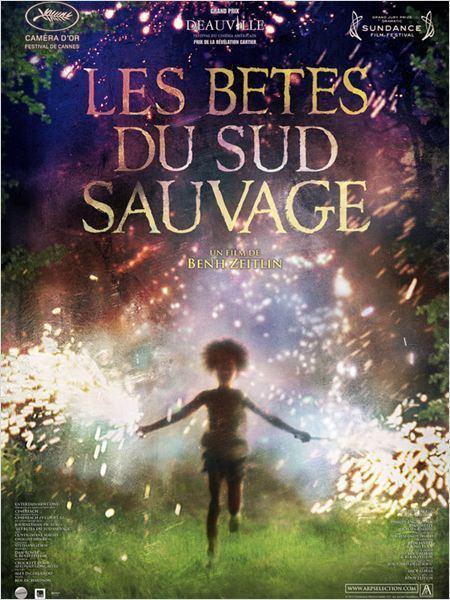 Cinéma : Les bêtes du sud sauvage  (Beasts of the Southern Wild)