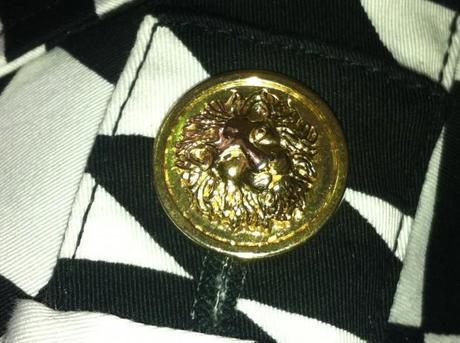 La tête de lion reprise comme emblème de la même façon que la medusa pour la 1ère ligne.
