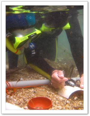 atelier pédagogique archéologique sous-marin