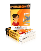 PBOOK002 FINAL small1 Comment apprendre du vocabulaire? Optimisation du cerveau