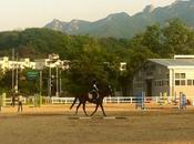 Ballade cheval pres Seoul