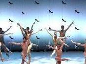 spectacles danse voir 2013/2014