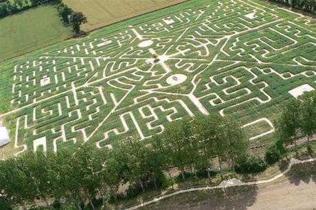 Labyrinthe8