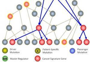 CANCER: Vers des essais cliniques pour 1 patient à la fois? – Columbia University