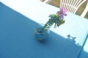 Décoration de table avec des éprouvettes, placez des fleurs dans les éprouvettes