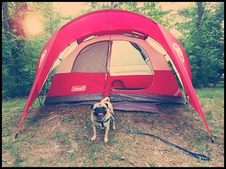 BeFunky_tent.jpg