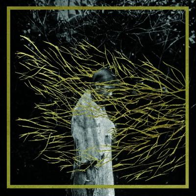 En attendant... Engravings de Forest Swords