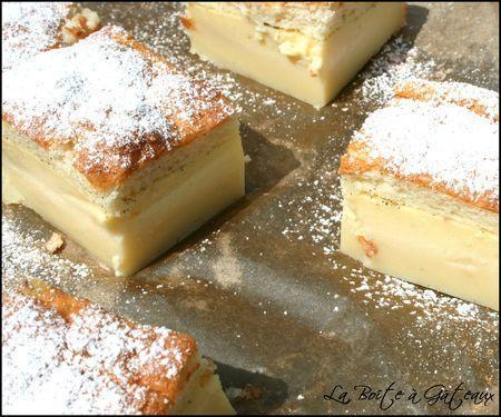 Magic Custard Cake__