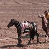 Le bouzkachi, sport national en Afghanistan