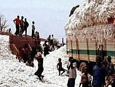 Coton Burkina qu'on nous