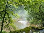 pertes l'Ain, merveilles d'un paysage karstique dans Jura