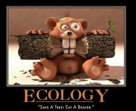 ecology save a tree eat a beaver