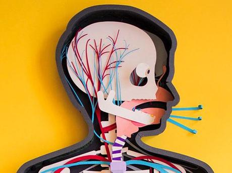 Le making of de « Human Body » par Kelli Anderson