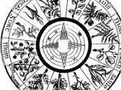 calendrier celtique