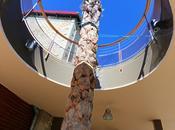 Riberach, hôtel, cave, restaurant. paradis l'amateur bien vivre Roussillon