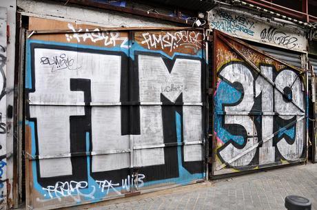 FLM 319