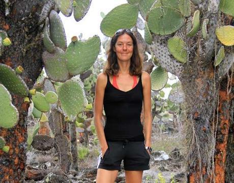 Cactus géants sur Santa cruz aux Galapagos