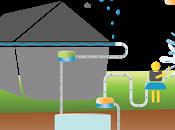 Consommons-nous l'eau potable manière intelligente?