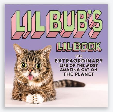 lil_bub_book