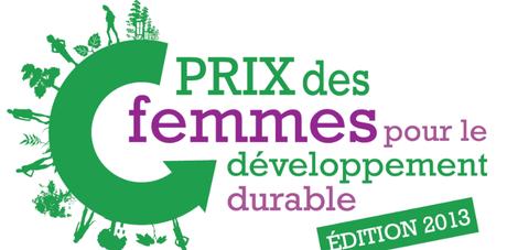 Prix des femmes pour le développement durable 2013