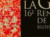 Rendez-vous l'histoire (Blois) guerre