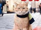 chat rues nommé