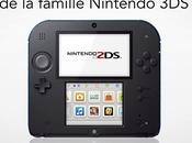 Petite pour Nintendo