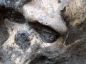 ÉVOLUTION: l'origine, seule espèce d'Homo? Science
